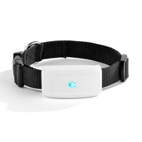GPS kaelarihm TKStar 2017 jalitaja koertele