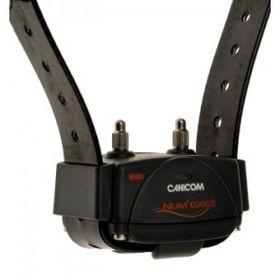 Elektrooniline dresseerimise kaelarihm Canicom